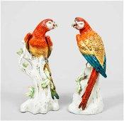 Pair of Antique Continental Porcelain Parrots, C 1880