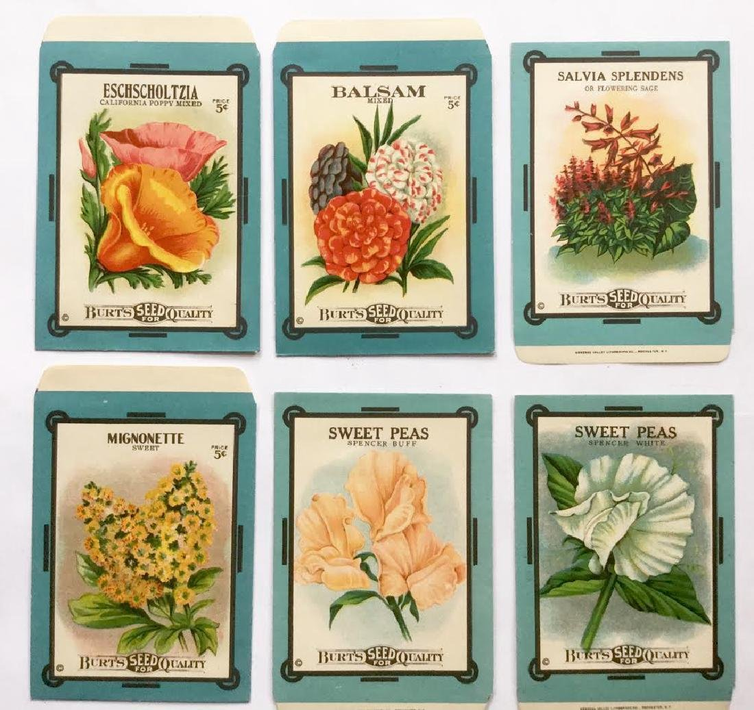 "1920's ""burts Seeds"" Flower Seed Envelopes"