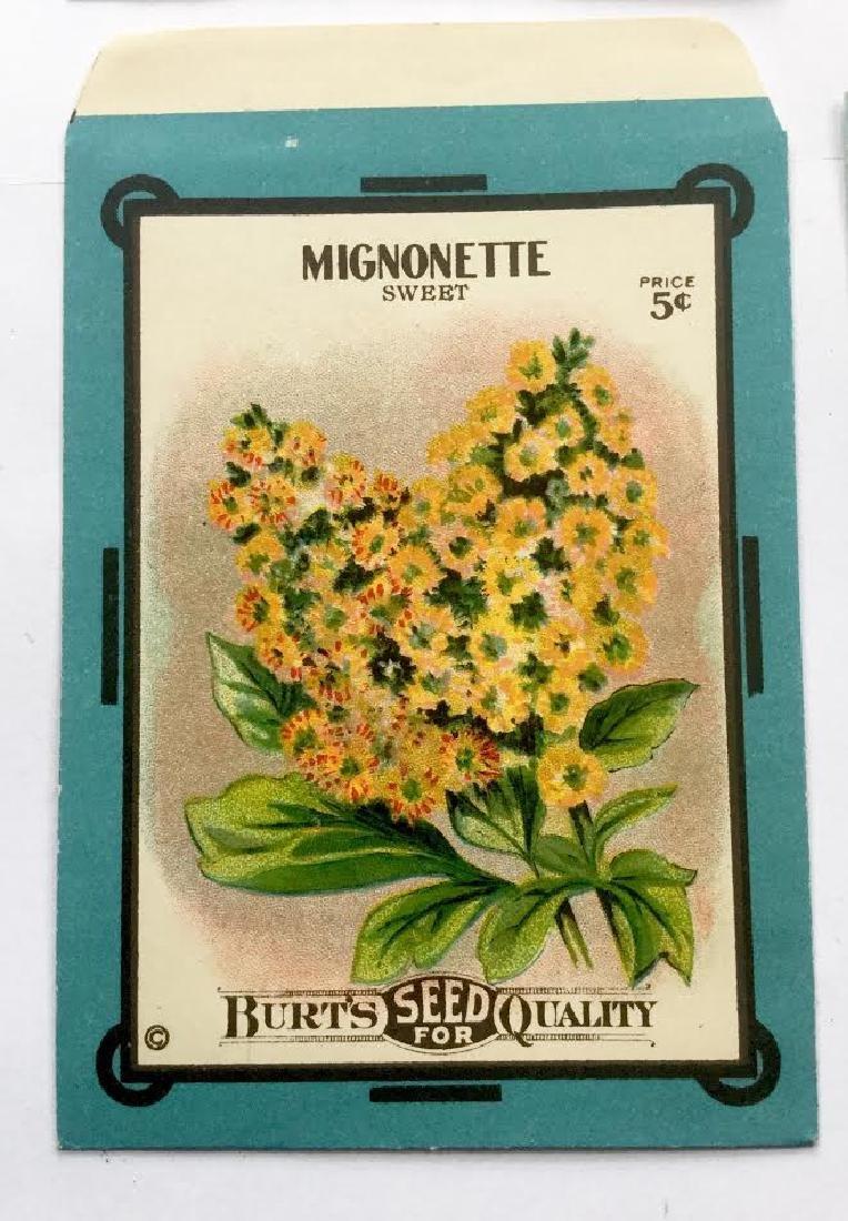 "1920's ""burts Seeds"" Flower Seed Envelopes - 2"