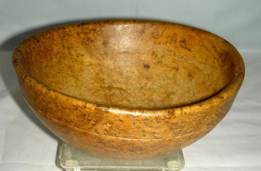 Small American Ash Burl Bowl, 19th century - 2