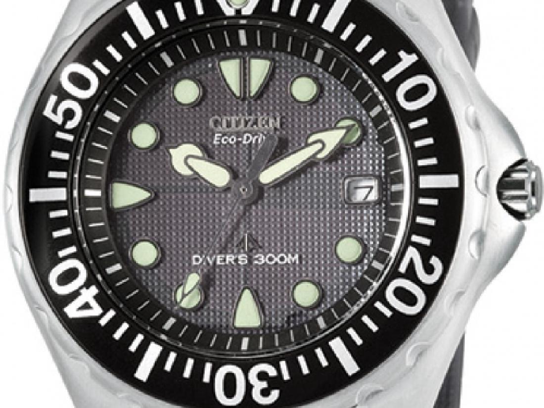 Citizen Eco Drive Promaster Dive Watch