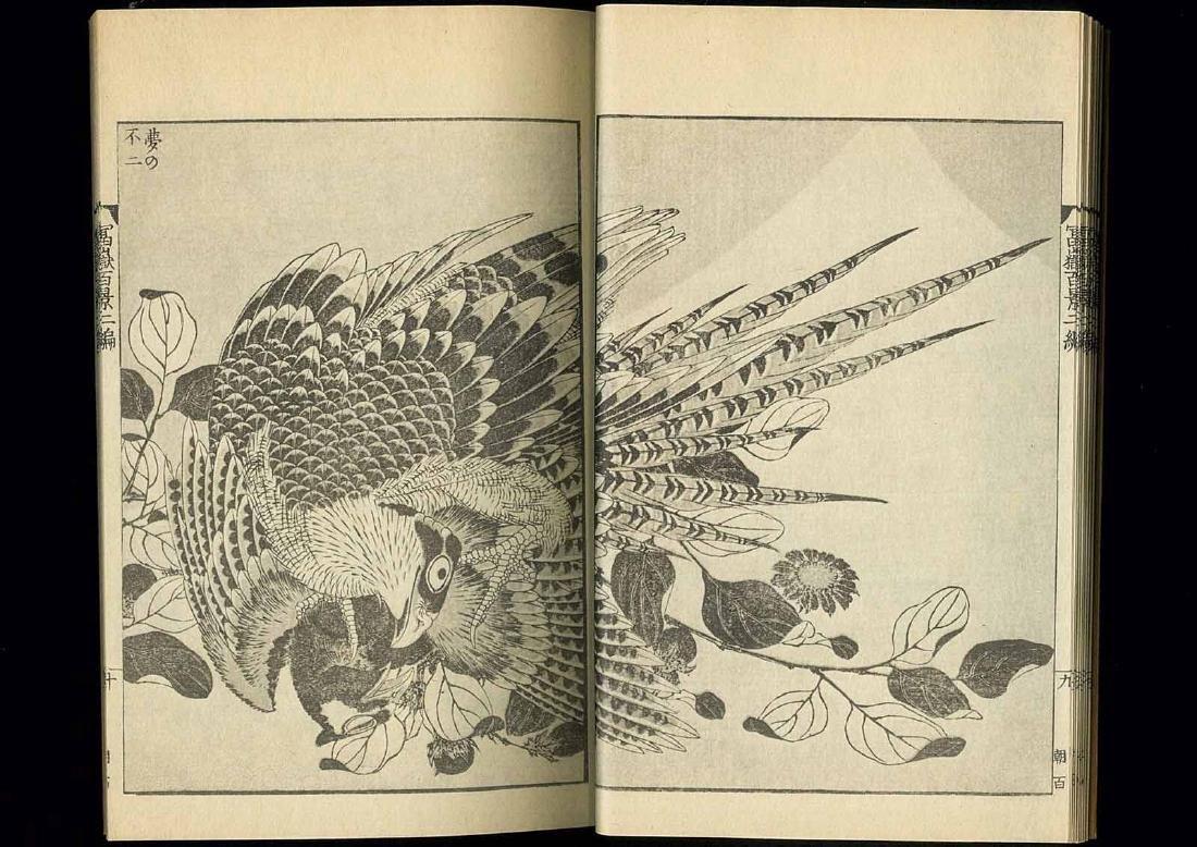 Hokusai Katsushika: 100 Views of Mt. Fuji 3 Volume Set - 7