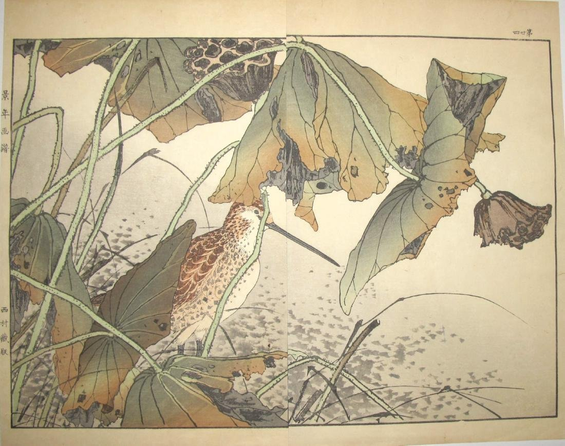 Imao Keinen: a Bird With a Long Beak