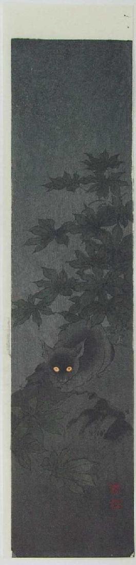 Koho Shoda: Black Cat at Night