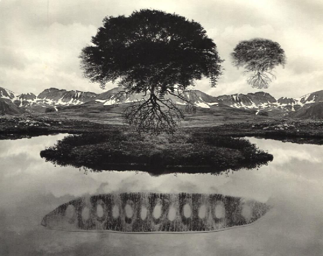 JERRY UELSMANN - Untitled 1969