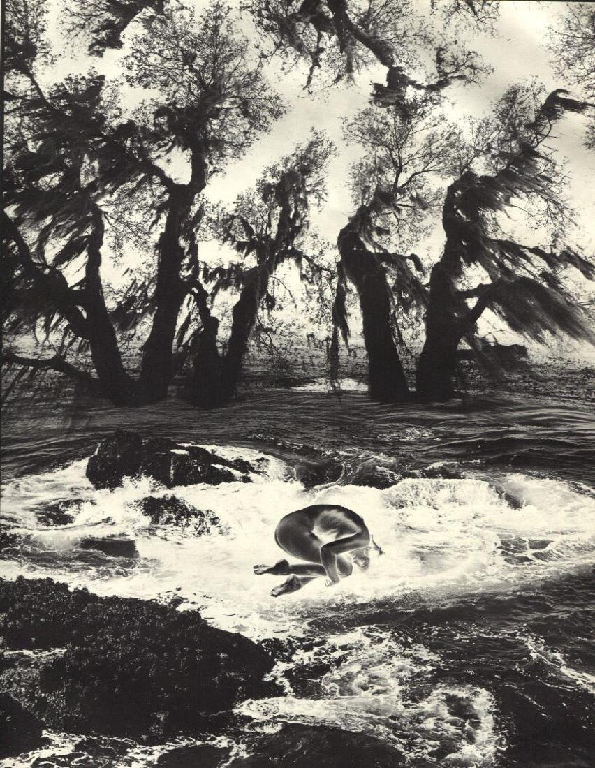 JERRY UELSMANN - Untitled 1971