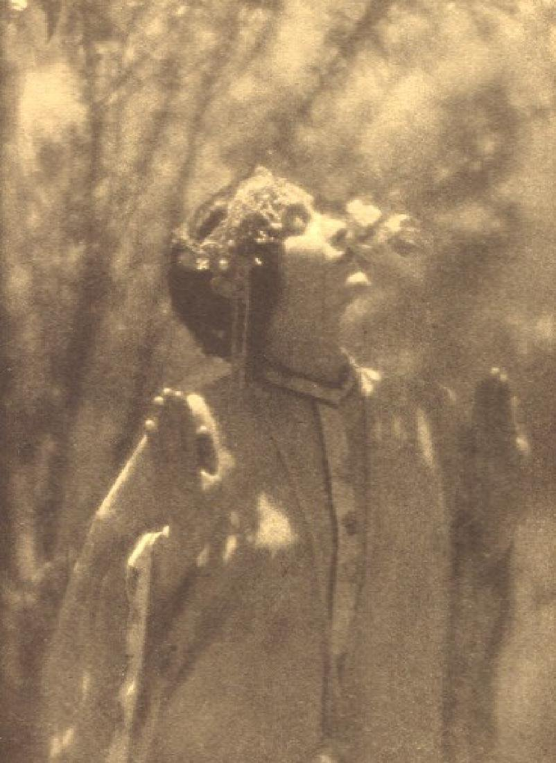 EDWARD WESTON - The Plum Tree