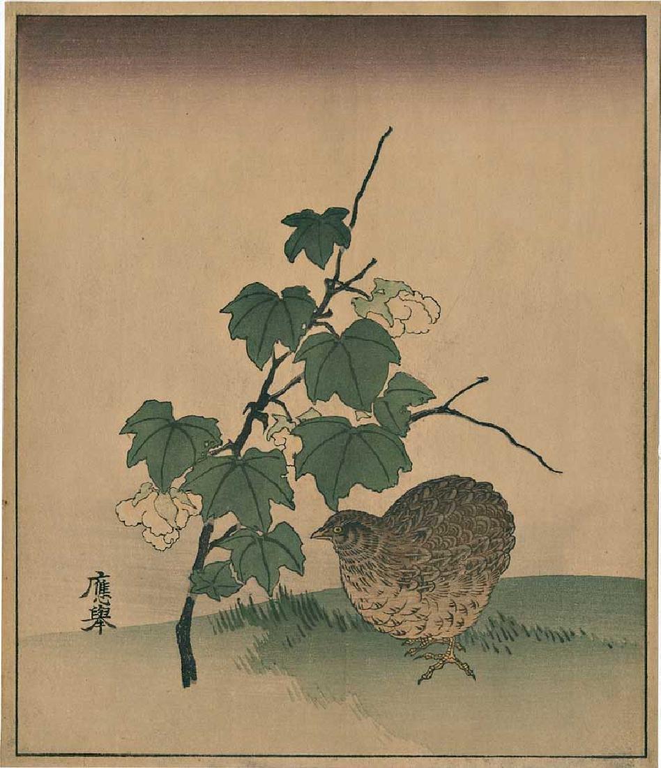 Okyo Quail & Cotton Plants Japanese Woodblock Print