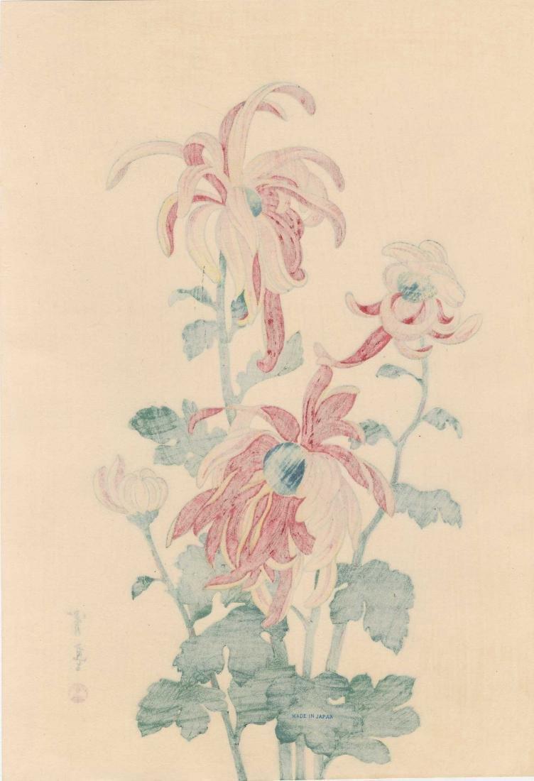 Seitei Watanabe Chrysanthemum Japanese Woodblock Print - 2