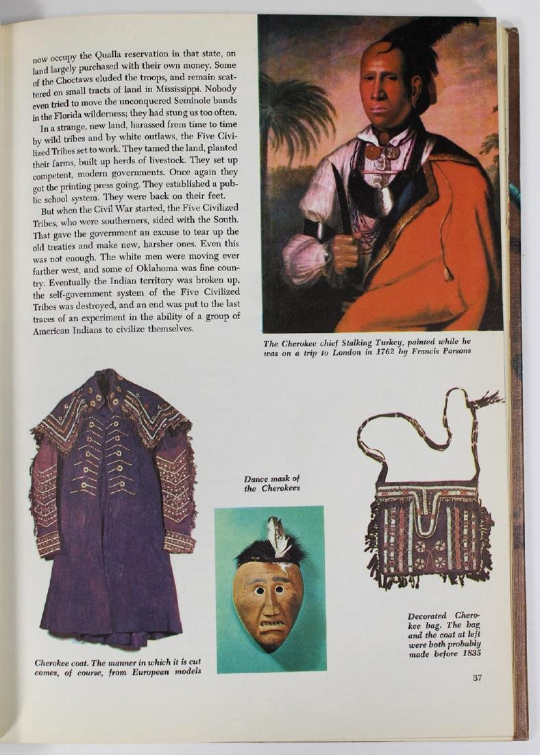 La Farge: the American Indian - 6