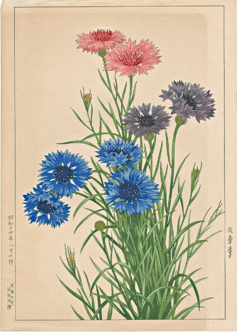Hodo Nishimura Chrysanthemums Japanese Woodblock Print