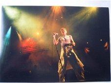 David Bowie Autograph