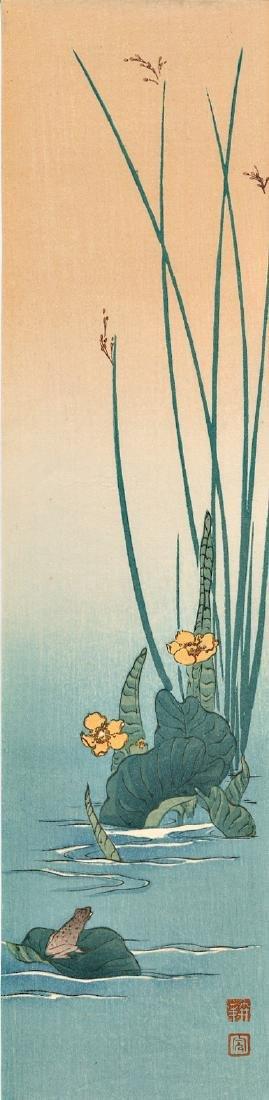 Koho Shoda Frog Japanese Woodblock Print