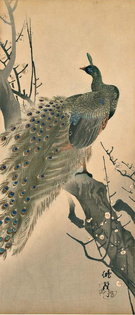Kosei Peacock Japanese Woodblock Print