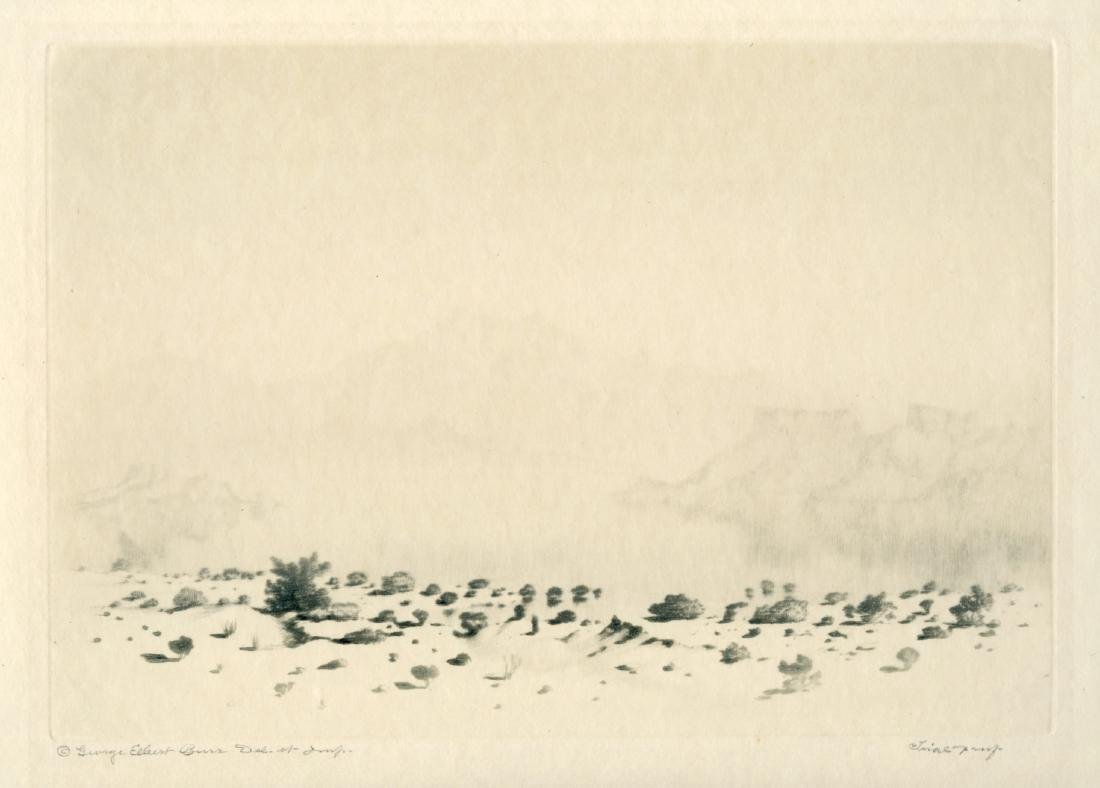 George Elbert Burr a Mirage Original Etching & Drypoint
