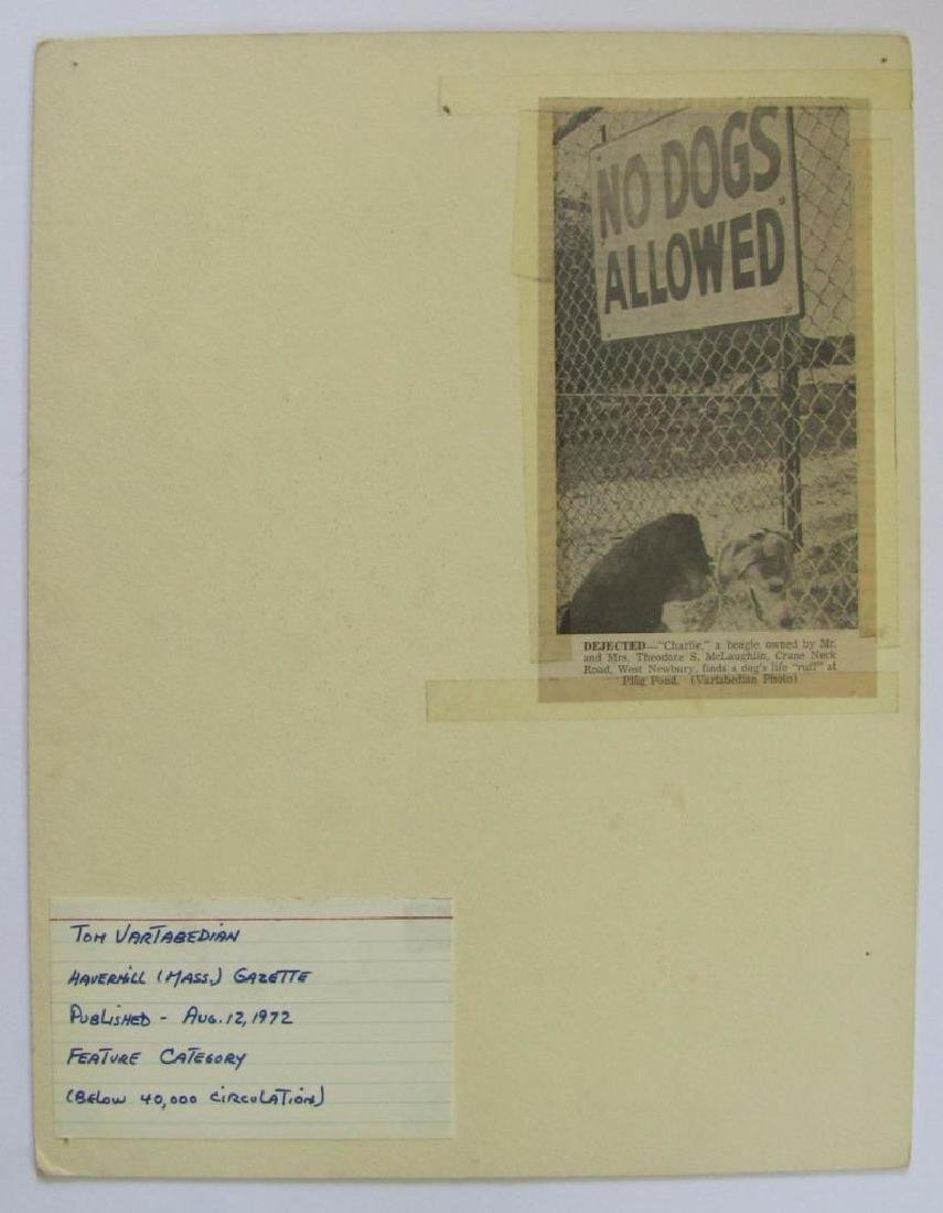 "1972 Art Photo Dog At ""No Dogs Allowed"" Sign - 2"