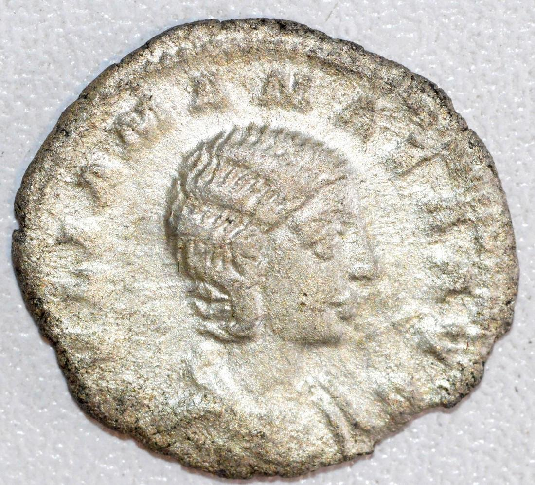 Ancient Roman Silver Denarius of Empress Julia Maesa