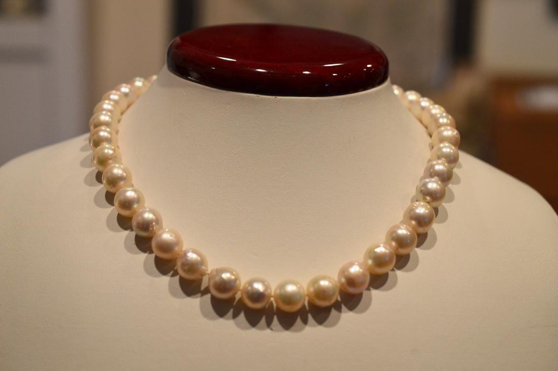 "Ladies 14"" Pearl Necklace"
