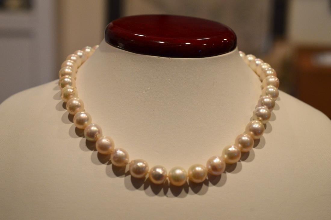 "Ladies 14"" Pearl Necklace - 2"