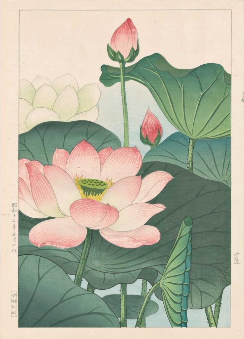 Hodo Nishimura Woodblock Pink Lotus Blossoms