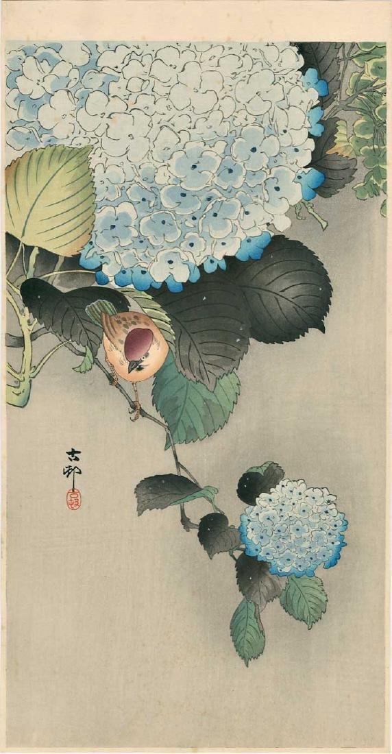 Ohara Koson Woodblock Sparrow and Hydrangea