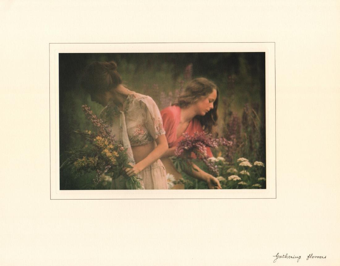 DAVID HAMILTON - Gathering Flowers