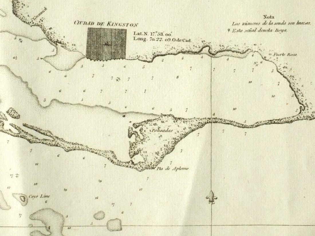 de Ferrer: Antique Map of Kingston, Jamaica, 1818 - 4