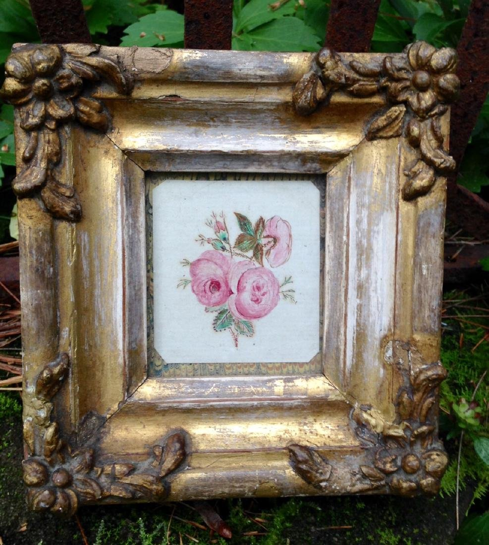 Moss Rose Watercolor 1840s