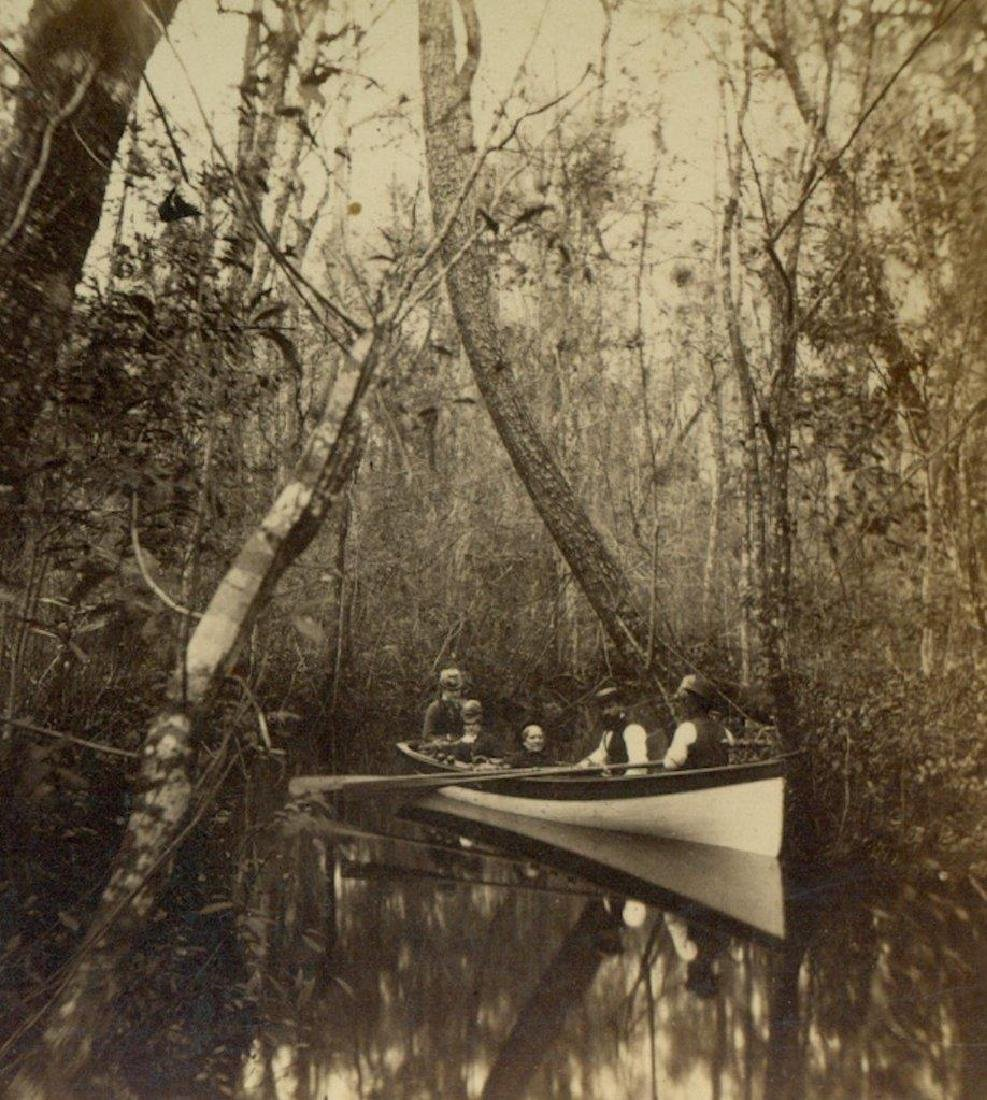 1880 Five People Row Boat Through Wooded Florida Swamp
