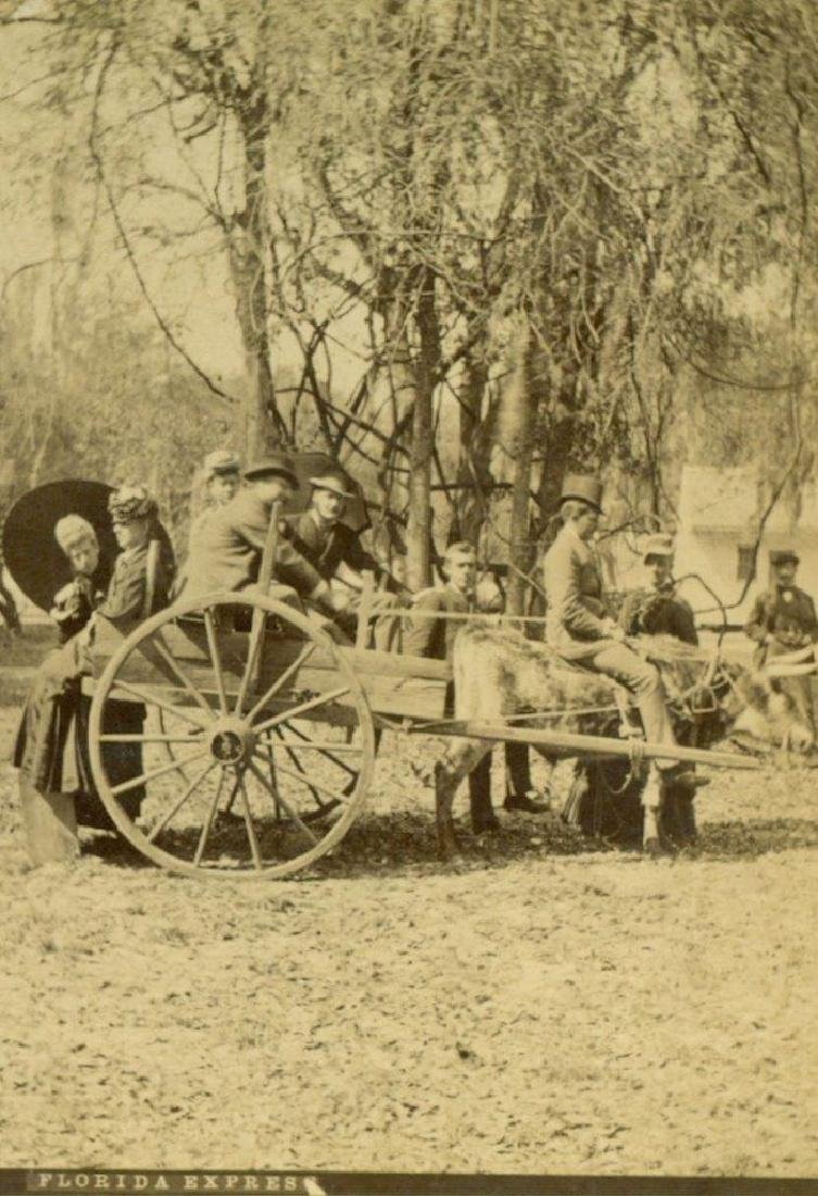 1880 Ox and Cart Passengers & Rider Florida