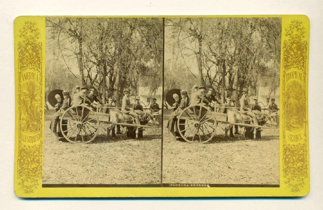 1880 Ox and Cart Passengers & Rider Florida - 2