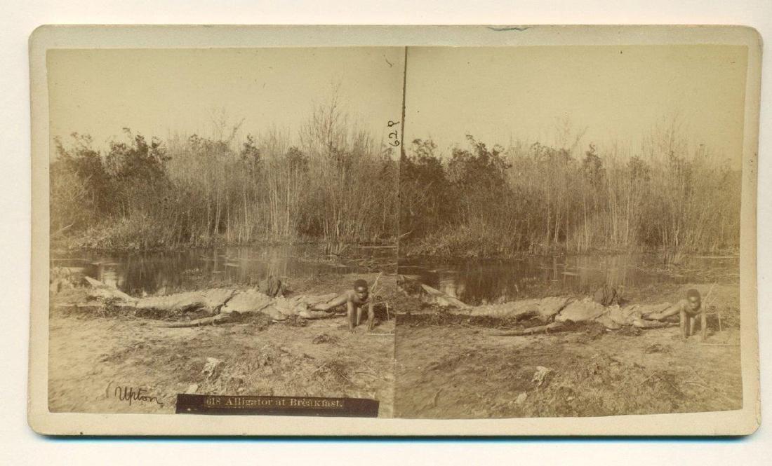 1880 Florida Alligator Bites African American Boy - 2