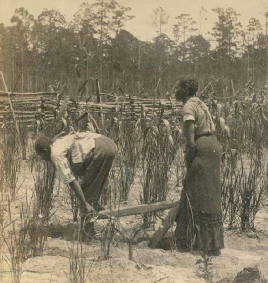 1880 Savannah African American Woman Man Pulls Plow