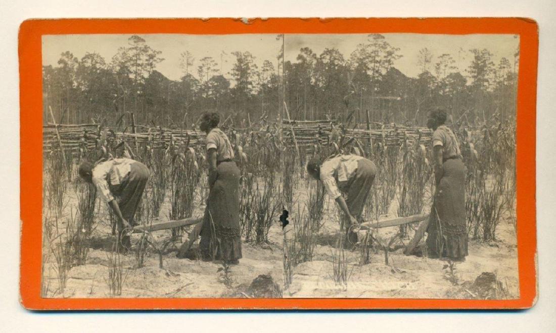 1880 Savannah African American Woman Man Pulls Plow - 2