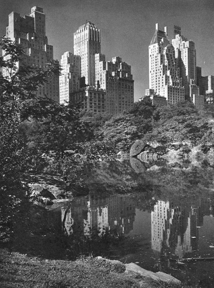 DR. D J RUZICKA - The Magic City