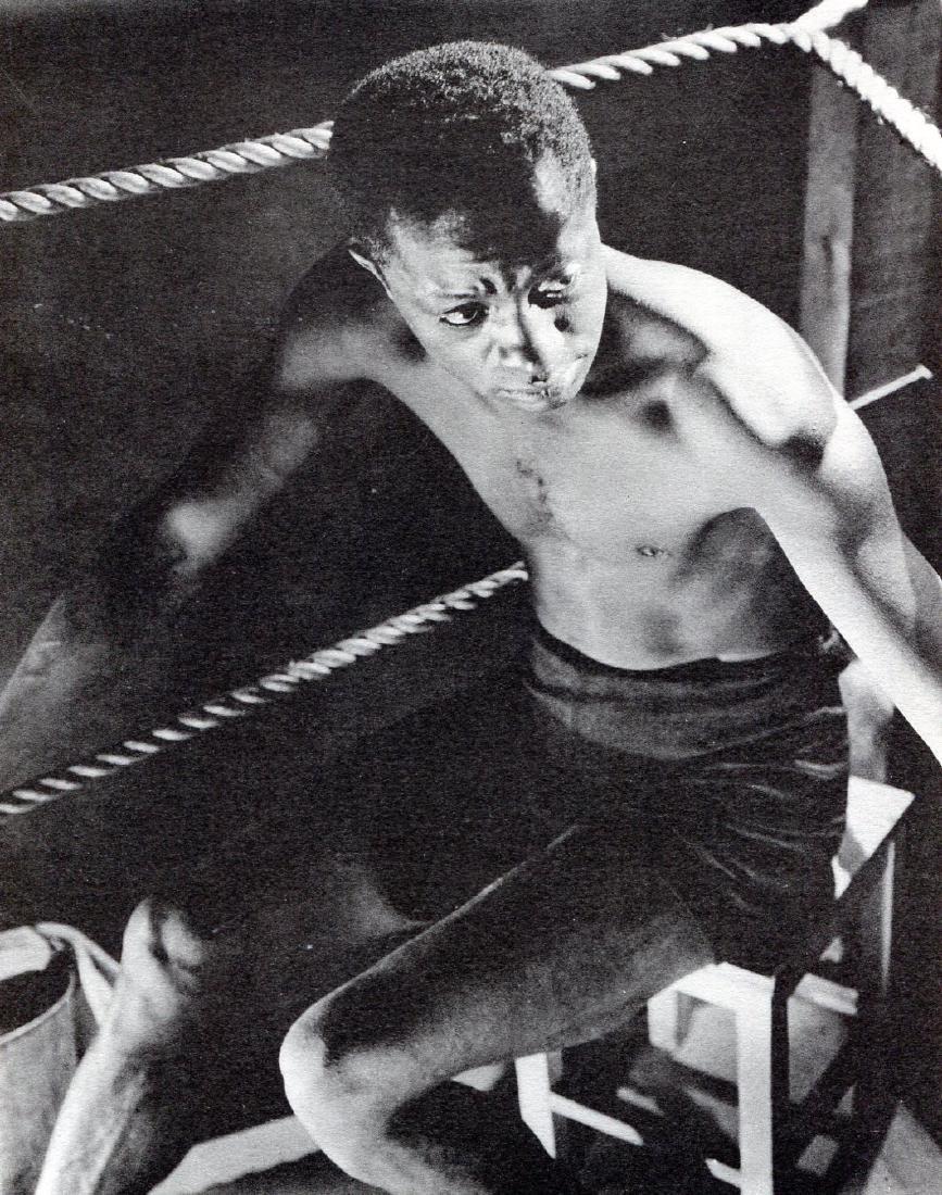 MARTIN BRUEHL - Fighter, study