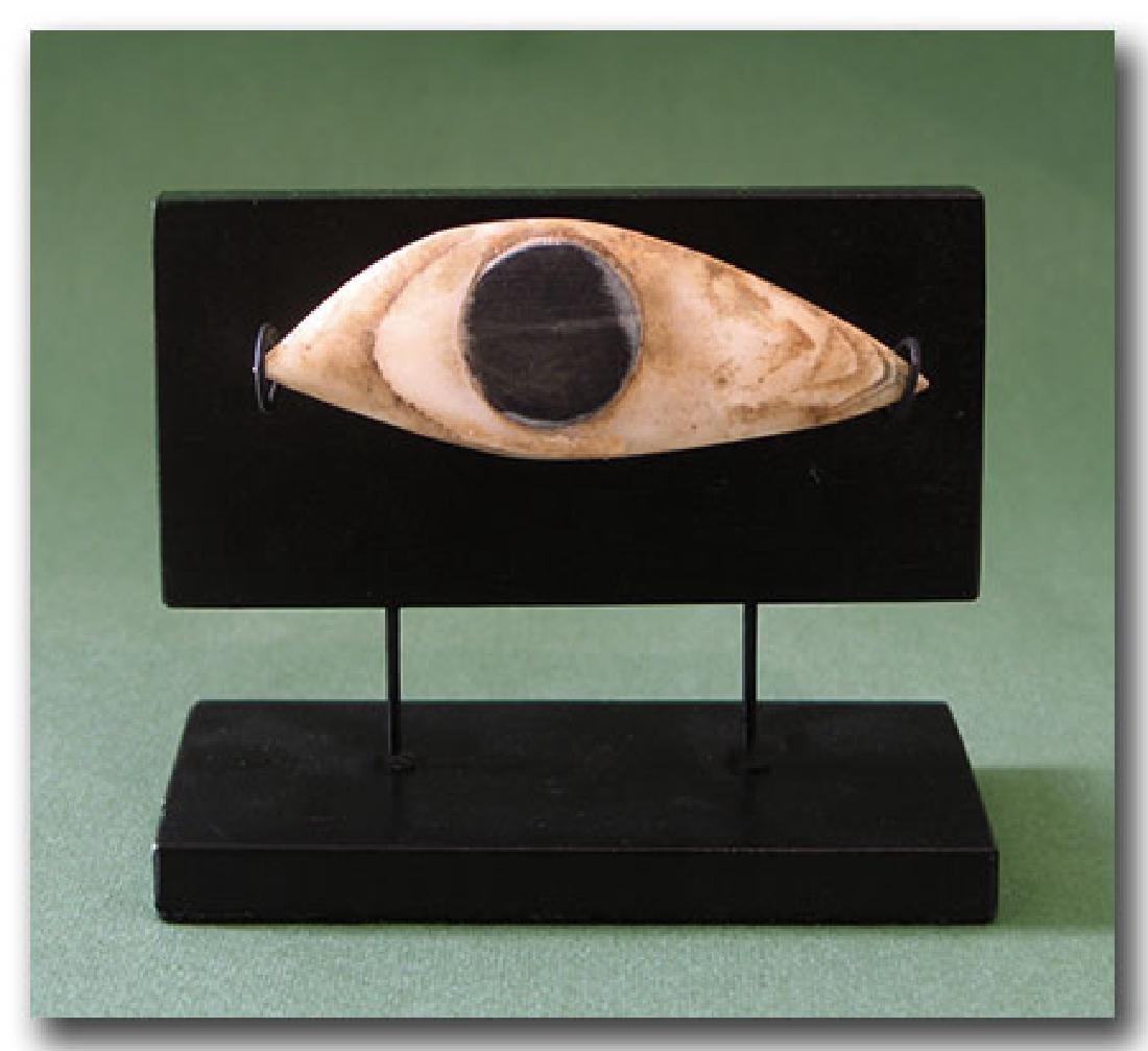 Large Egyptian Steatite Eye Inlay, c. 500 B.C. - 2