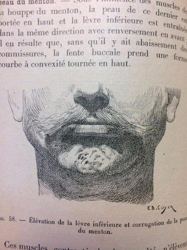 La Mimique Cuyer Octave - 5