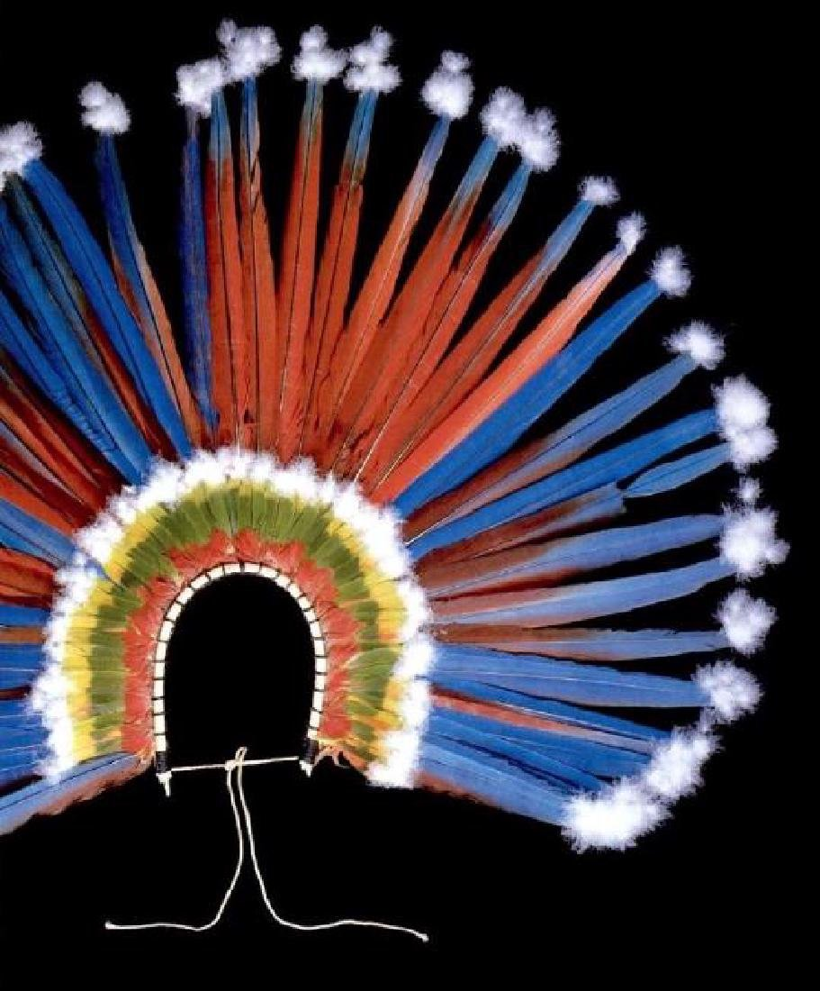 Feather Art from Brazilian Indigenous Peoples - 10