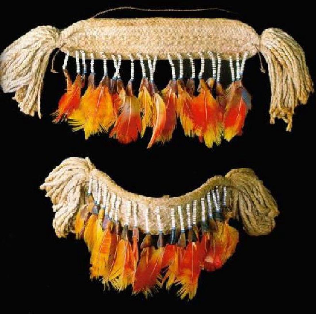 Feather Art from Brazilian Indigenous Peoples - 3