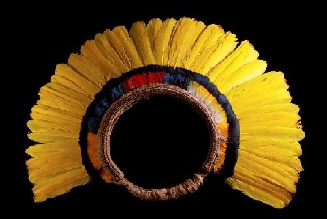 Feather Art from Brazilian Indigenous Peoples - 4