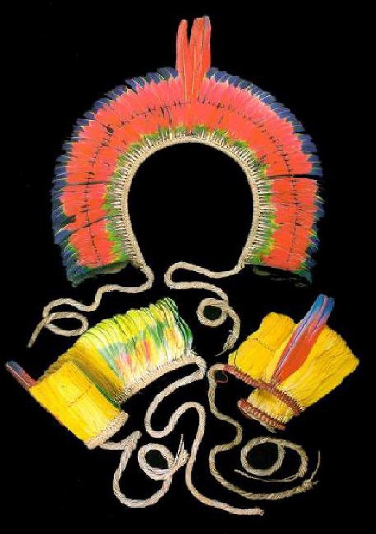 Feather Art from Brazilian Indigenous Peoples - 7