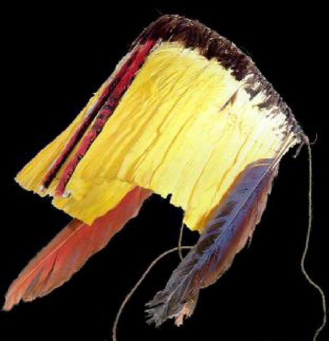 Feather Art from Brazilian Indigenous Peoples - 8