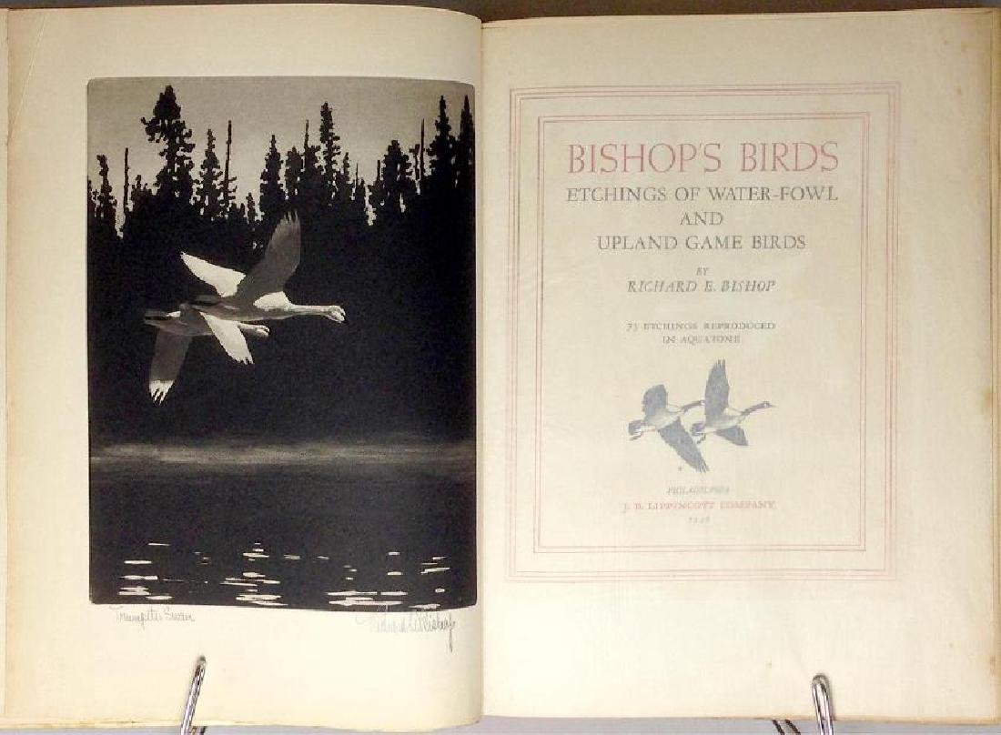 Bishop's Birds, Etchings of Water-Fowl Upland Game - 3