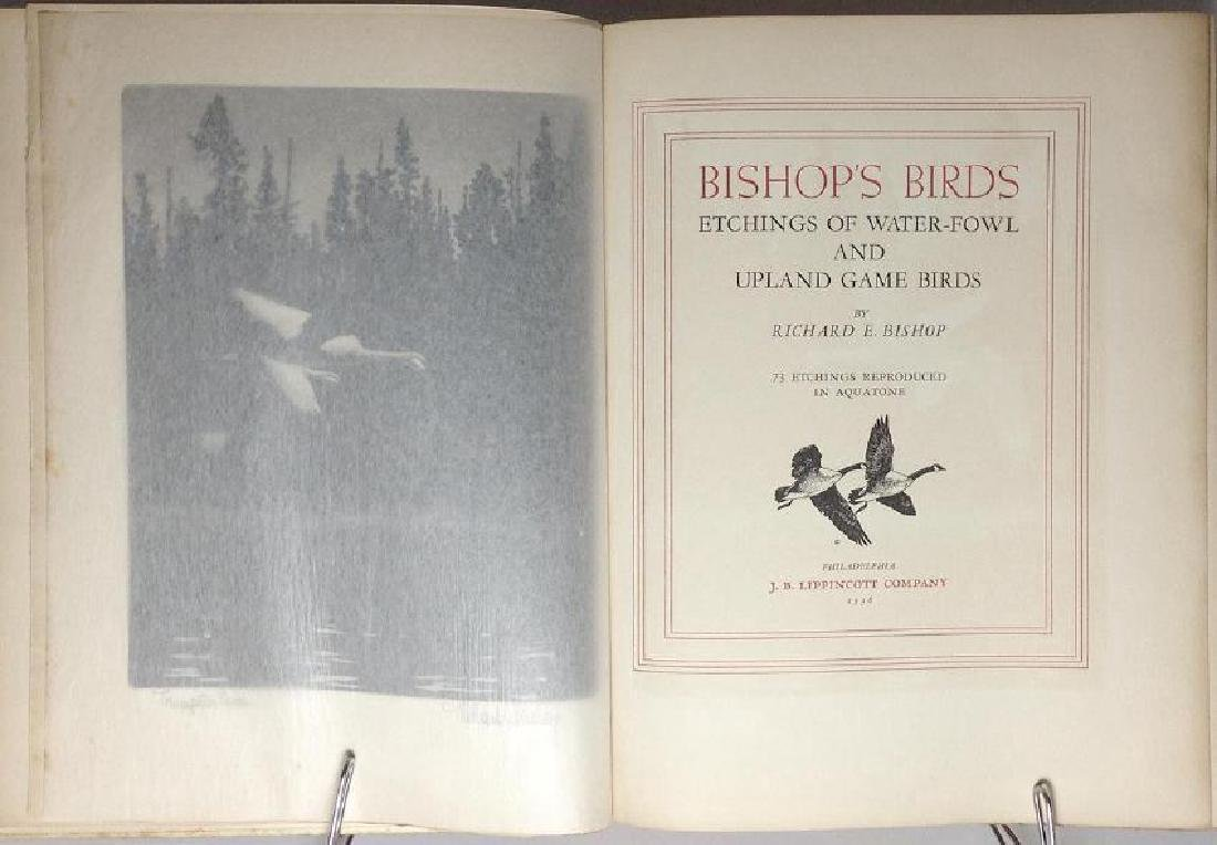 Bishop's Birds, Etchings of Water-Fowl Upland Game - 4