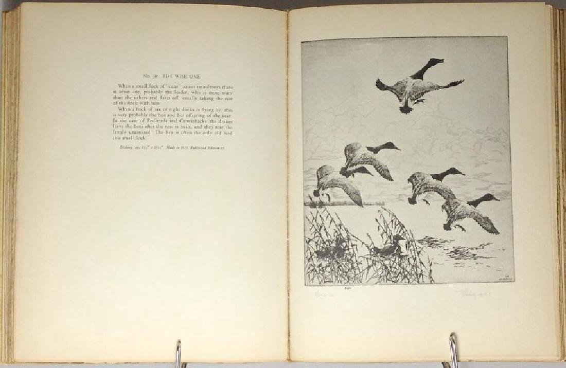 Bishop's Birds, Etchings of Water-Fowl Upland Game - 5
