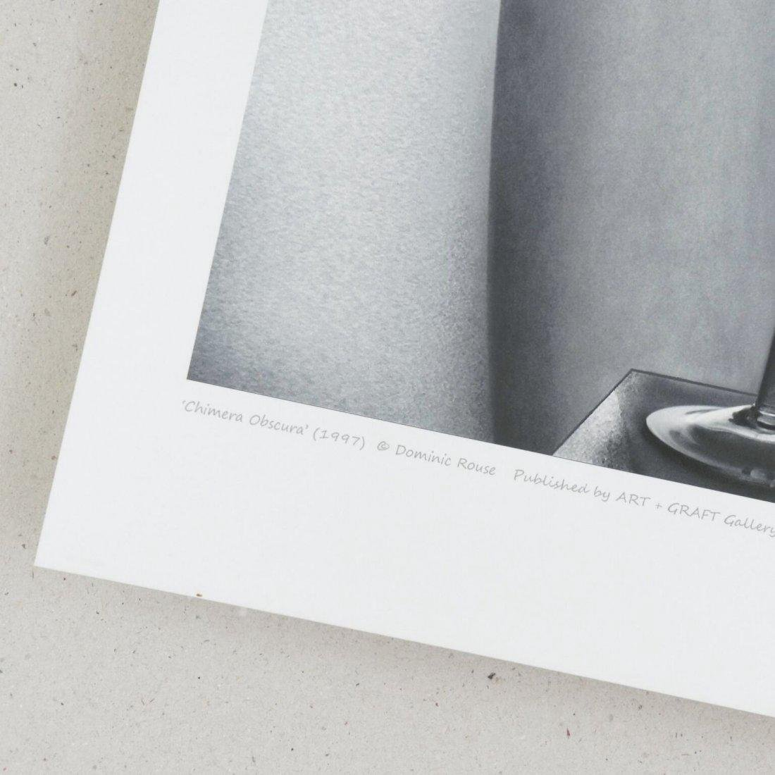 Dominic Rouse Chromogenic Print Chimera Obscura - 3