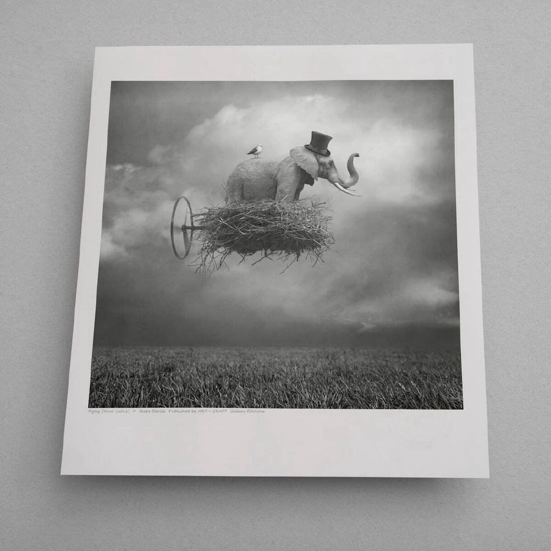 Beata Bieniak Chromogenic Print Flying Circus - 2