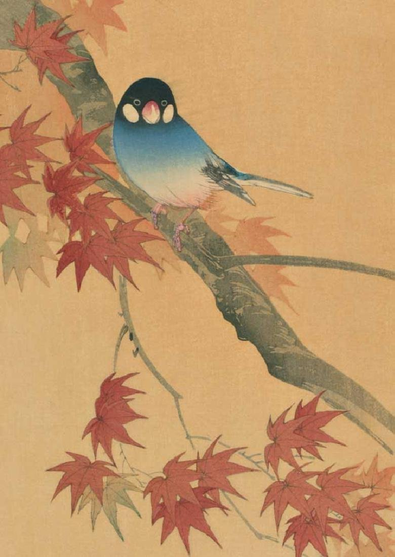 Sozan Ito Woodblock Java Finch on a Maple Branch - 2