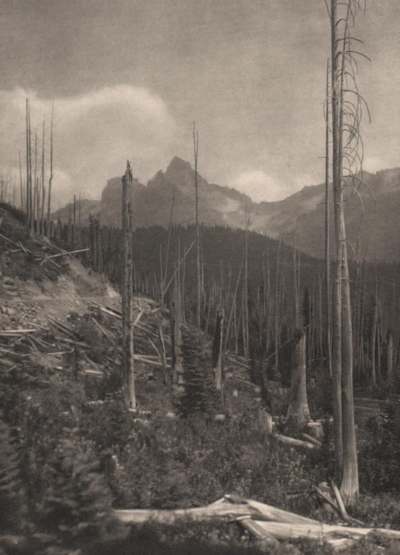 E.O. HOPPE - Mt Rainier